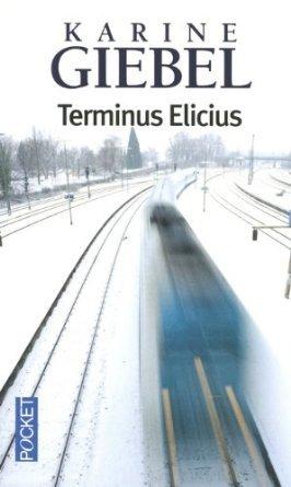 ob_22b8caa0982196a5ba77e840fce9d2c4_terminus-elicius
